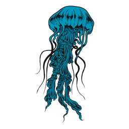 Medusa Qualle Abbildung