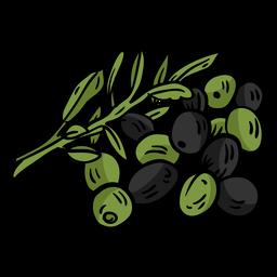 Olive branch leaf flat