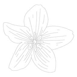 Línea de flor de pétalo