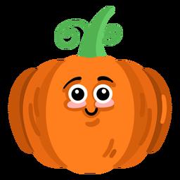 Pumpkin cucurbit gourd flat