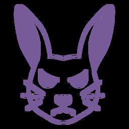 Conejo enojado cabeza hocico golpe