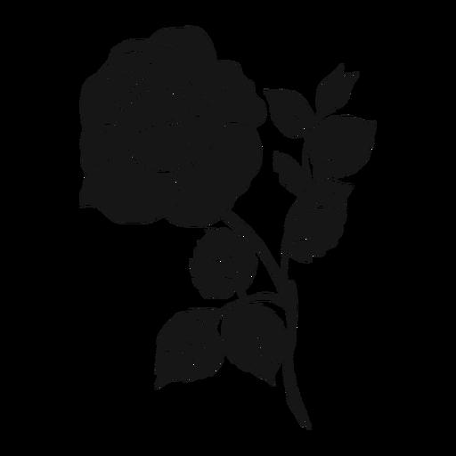 Silueta detallada de hoja de pétalo de rosa Transparent PNG