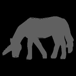 Silueta de cuerno de cola de caballo unicornio