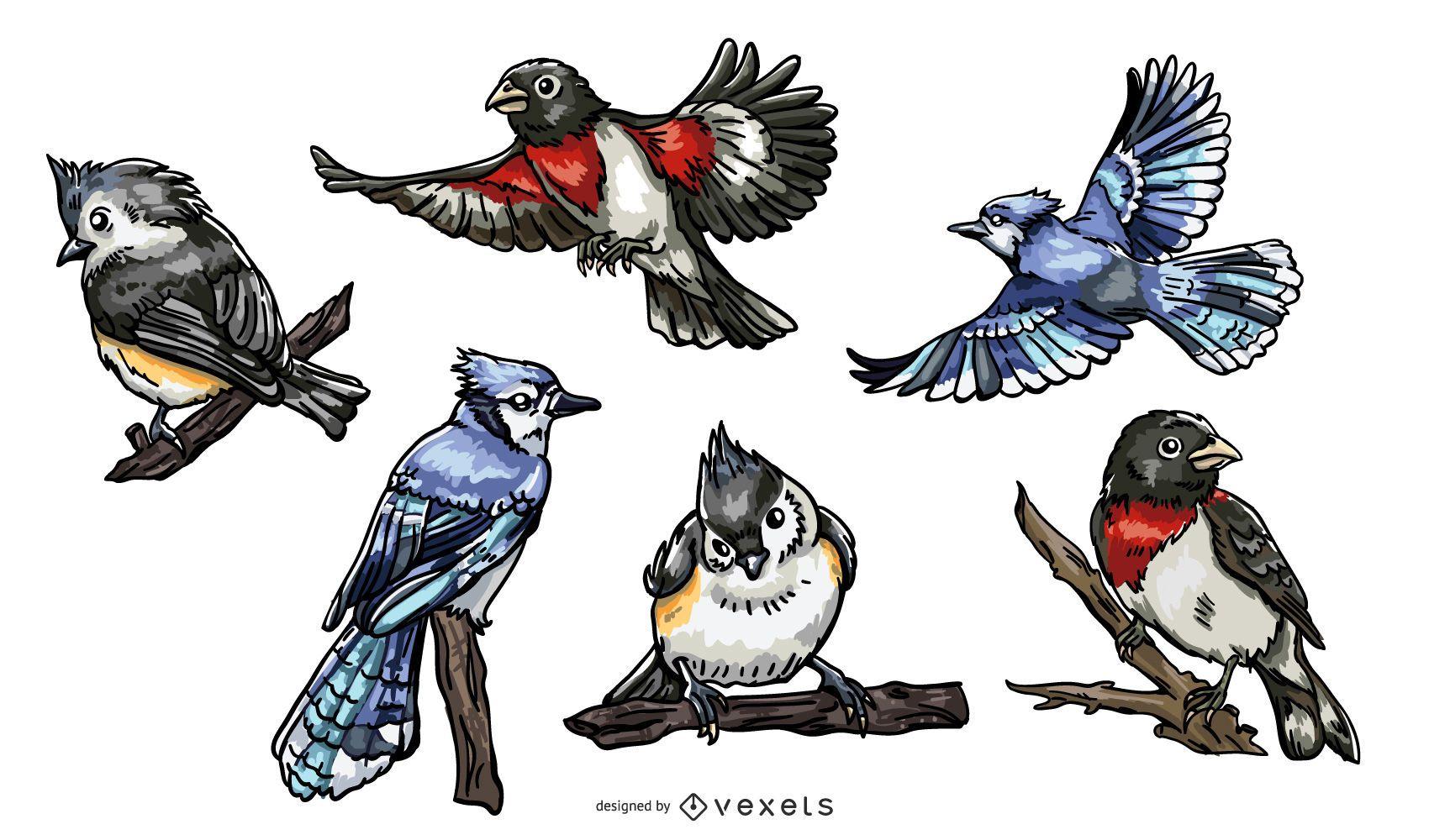 Realistic birds illustration pack