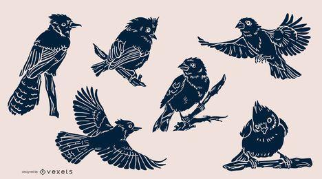 Pacote de pássaros realista