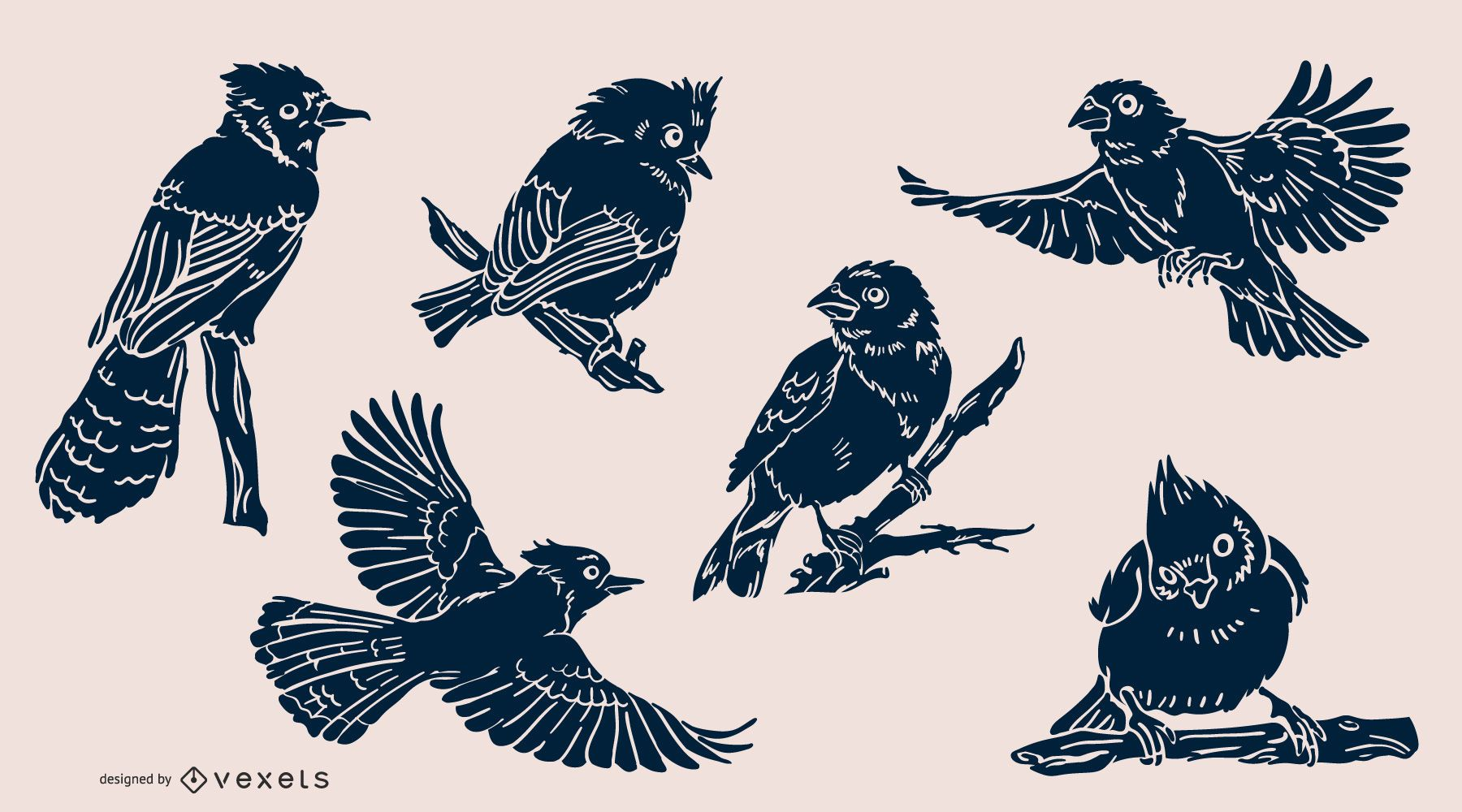 Realistic birds pack