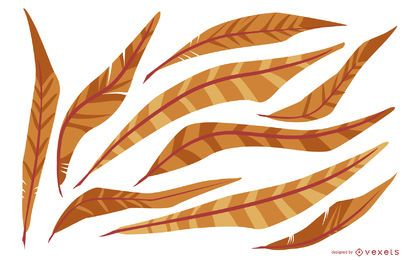 Orange Feder-Illustrations-Satz