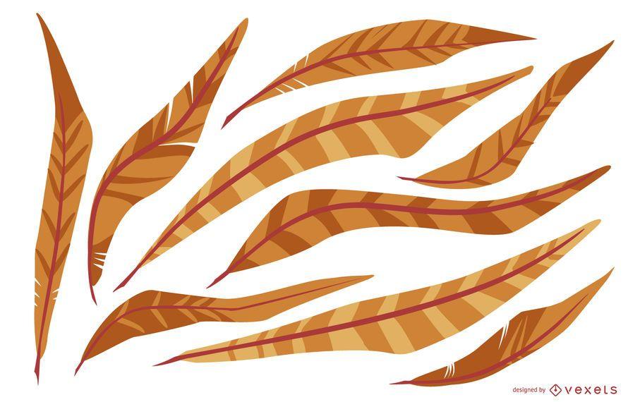 Orange Feather Illustration Pack