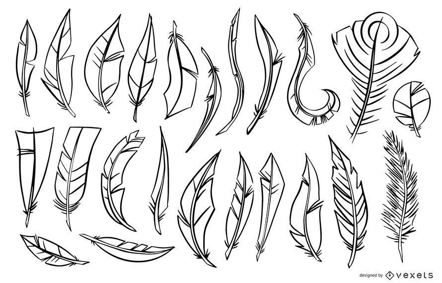 Stroke Feather Illustration Set