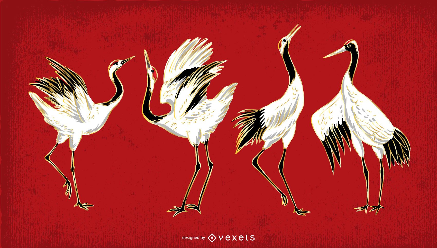 Crane bird illustration set