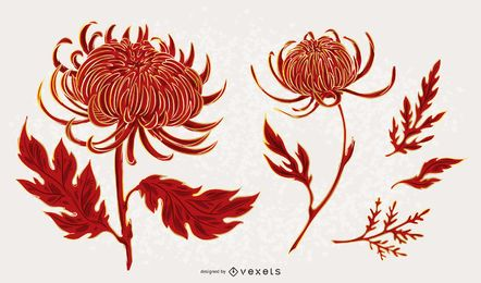 Chrysanthemen-Blumen-Illustrationssatz