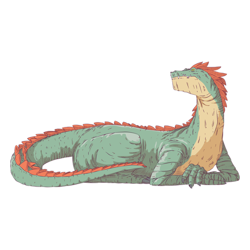 Dragon reptile colored coloured illustration Transparent PNG