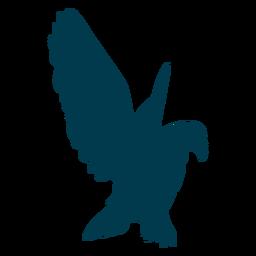 Águila, ala, silueta, pájaro