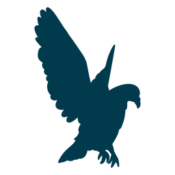 Eagle wing silhouette bird
