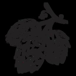Ilustración de cono de lúpulo