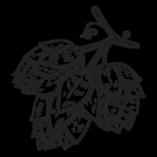 Ilustração de cone de lúpulo Transparent PNG