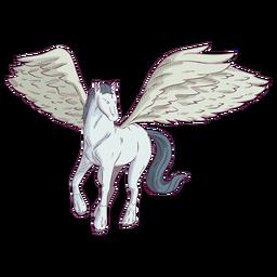 Ilustración de color de color de caballo pegaso