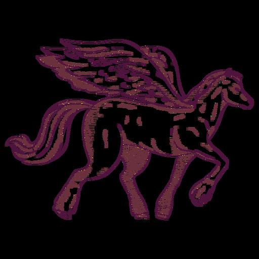Ilustración del caballo de Pegaso Transparent PNG