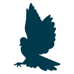 Silueta de ala de paloma