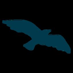 Siehe Möwenflügel Silhouette