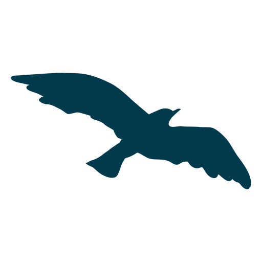See gull wing silhouette Transparent PNG