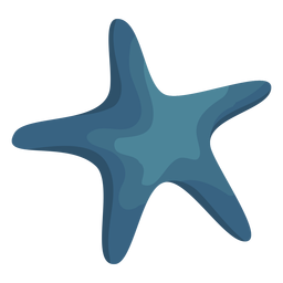Sterne Seestern flach