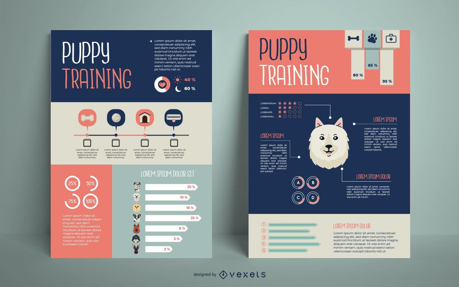 Dog Training Infographic Design