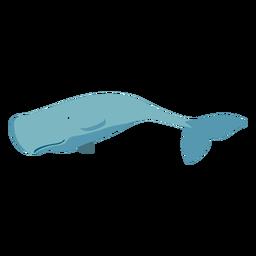 Baleia plana dos desenhos animados azul