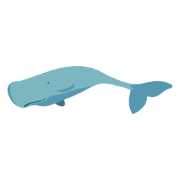 Cartoon flat whale blue