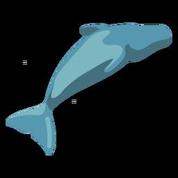 Imagen de ballena plana de dibujos animados