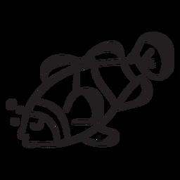 Peixe-palhaço dorme golpe de animal