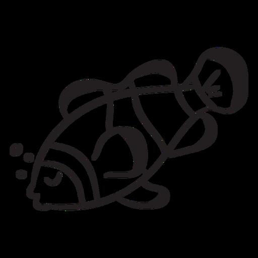 Peixe-palhaço dorme acidente vascular cerebral Transparent PNG