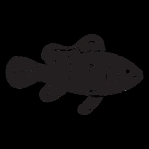 Silhueta de peixe-palhaço nadando Transparent PNG