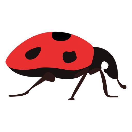 Flat ladybug Transparent PNG