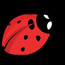 Flat ladybug image