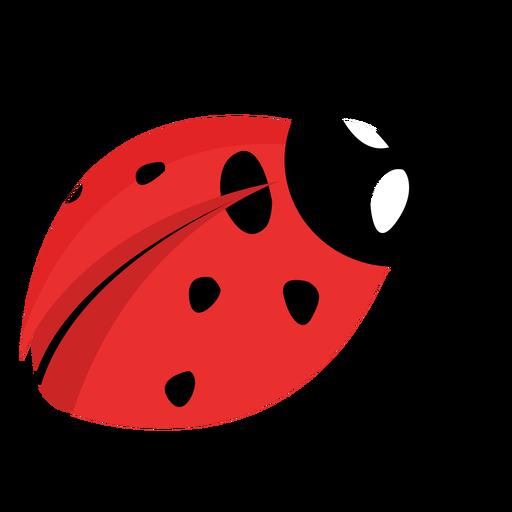 Flat ladybug image Transparent PNG