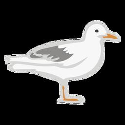 Animal de cor plana de gaivota voar