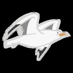 Mosca de gaivota cor animal plano