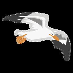 Animal de cor de gaivota plano