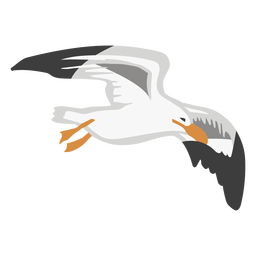 Gull color animal flat
