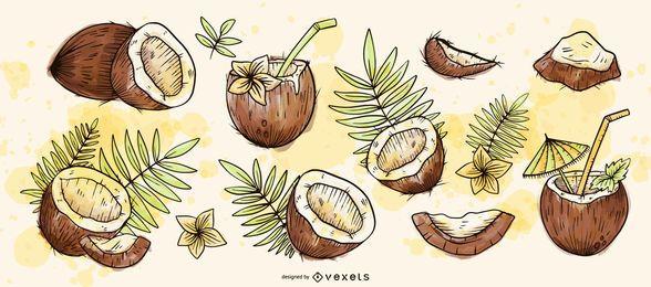 Hand gezeichnetes Kokosnuss-Set
