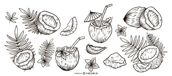 Conjunto dibujado a mano de coco