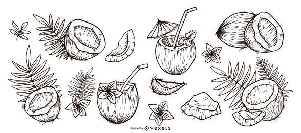 Hand gezeichneter Satz der Kokosnuss