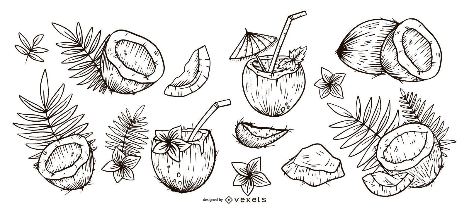 Coconut hand drawn set