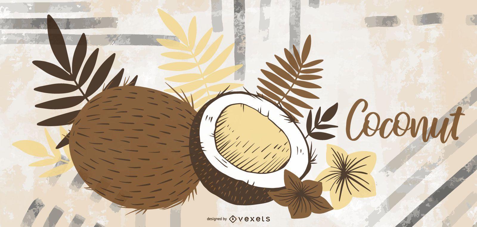 Coconut hand drawn illustration