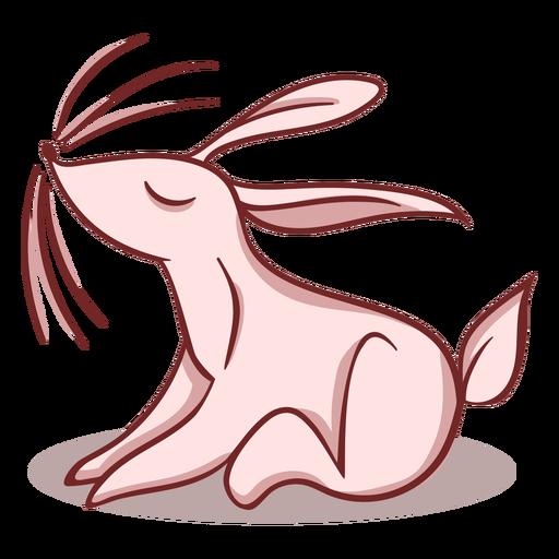Rabbit stylish character
