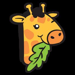 Linda cabeza de jirafa comiendo