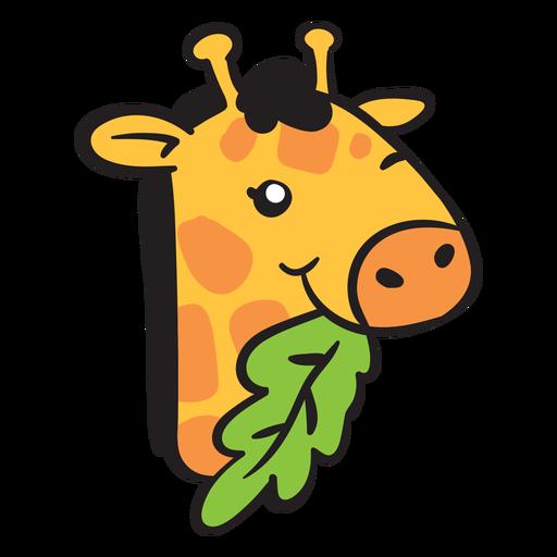 Linda cabeza de jirafa comiendo Transparent PNG