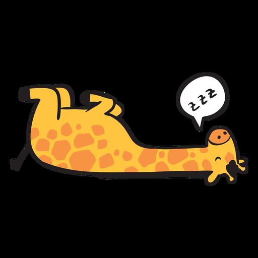 Cute giraffe sleeping