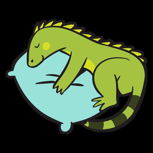 Cute green iguana sleeping